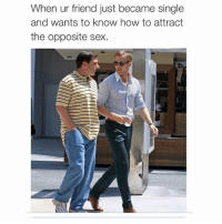 """""""Bro i haven't been single since 2010 I don't even remember how to talk to girls"""" (@champagne_diesel): When ur friend just became single  and wants to know how to attract  the opposite sex. """"Bro i haven't been single since 2010 I don't even remember how to talk to girls"""" (@champagne_diesel)"""