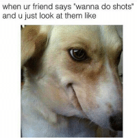 """Of course I do: when ur friend says """"wanna do shots""""  and u just look at them like Of course I do"""
