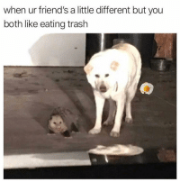 A Little Different: when ur friend's a little different but you  both like eating trash
