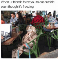 Friends, Memes, and 🤖: When ur friends force you to eat outside  even though it's freezing I'm a chilli dog