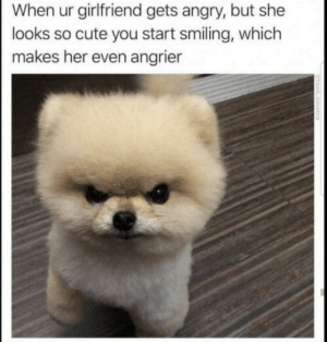 https://t.co/ZvOaUkGzDd: When ur girlfriend gets angry, but she  looks so cute you start smiling, which  makes her even angrier https://t.co/ZvOaUkGzDd