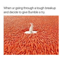 Bumble, Girl Memes, and Pro: When ur going through a tough breakup  and decide to give Bumble atry. Pro tip!