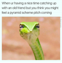 Memes, Time, and Old: When ur having a nice time catching up  with an old friend but you think you might  feel a pyramid scheme pitch coming