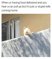 Food, Funny, and Home: When ur having food delivered and you  hear a car pull up but it's just ur stupid wife  coming home Hi