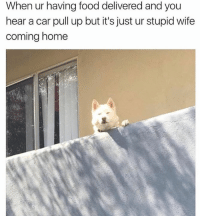 Food, Memes, and Home: When ur having food delivered and you  hear a car pull up but it's just ur stupid wife  coming home