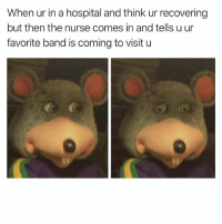 Hospital, Dank Memes, and Band: When ur in a hospital and think ur recovering  but then the nurse comes in and tells u ur  favorite band is coming to visit u 👀👀👀👀👀👀👀