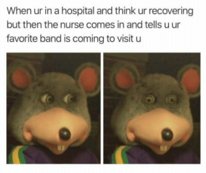 Hospital, Band, and Think: When ur in a hospital and think ur recovering  but then the nurse comes in and tells u ur  favorite band is coming to visit u I hate it when that happens