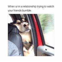 Memes, Bumble, and 🤖: When ur in a relationship trying to watch  your friends bumble the single life