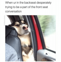 @tank.sinatra is a must follow if you like original memes that actually make you laugh out loud: When ur in the backseat desperately  trying to be a part of the front seat  conversation @tank.sinatra is a must follow if you like original memes that actually make you laugh out loud