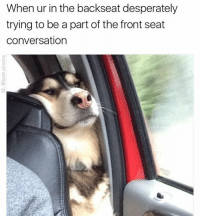 Funny, Memes, and Girl Memes: When ur in the backseat desperately  trying to be a part of the frontseat  conversation @tank.sinatra is a must follow if you like original memes that are actually funny (plus we go way back)