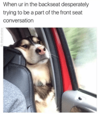 Desperate, Kardashians, and Memes: When ur in the backseat desperately  trying to be a part of the front seat  conversation 😂😂 lmao - - - - - 420 memesdaily Relatable dank MarchMadness HoodJokes Hilarious Comedy HoodHumor ZeroChill Jokes Funny KanyeWest KimKardashian litasf KylieJenner JustinBieber Squad Crazy Omg Accurate Kardashians Epic bieber Weed TagSomeone hiphop trump rap drake