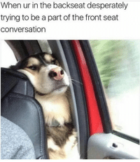 😂😂😂 MexicansProblemas: When ur in the backseat desperately  trying to be a part of the front seat  conversation 😂😂😂 MexicansProblemas