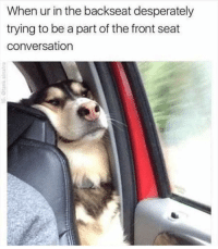 Funny, Lol, and Seat: When ur in the backseat desperately  trying to be a part of the front seat  conversation Lol