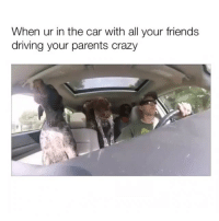Crazy, Driving, and Friends: When ur in the car with all your friends  driving your parents crazy nothing to see here fammmm