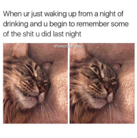 Girl Memes, Last Night, and Wake: When ur just waking up from a night of  drinking and u begin to remember some  of the shit u did last night  @been there tho Oh no @beentheretho