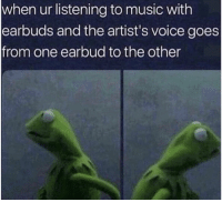 meirl: when ur listening to music with  earbuds and the artist's voice goes  from one earbud to the other meirl