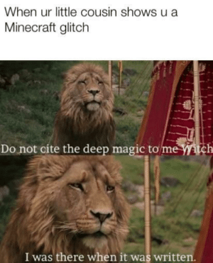 Memes, Minecraft, and Magic: When ur little cousin shows u a  Minecraft glitch  Do not cite the deep magic tome itch  I was there when it was written. Back in the old days via /r/memes https://ift.tt/2OZ2UCB