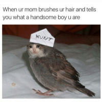 Hair, Mom, and Boy: When ur mom brushes ur hair and tells  you what a handsome boy u are https://t.co/m4SucBQF0H