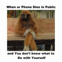 Memes, 🤖, and To-Do-With: When ur Phone Dies in Public  and You don't know what to  Do with Yourself