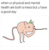 Funny, Girl Memes, and Mental Health: when ur physical and mental  health are both a mess but u have  a good day  toot Today was a good day @chrissimpsonsartist