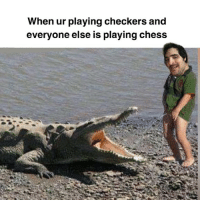 Drinking, Memes, and Chess: When ur playing checkers and  everyone else is playing chess I gotta stop drinking on tuesday mornings 😫