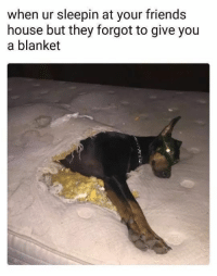 """Friends, Memes, and Tumblr: when ur sleepin at your friends  house but they forgot to give you  a blanket <p><a href=""""https://nochillmemes.tumblr.com/post/174091474394/you-call-it-destructive-i-call-it-survival-of"""" class=""""tumblr_blog"""">nochillmemes</a>:</p>  <blockquote><p>You call it destructive, I call it survival of fittest.<br/></p><p><b><i>You need your required daily intake of memes! Follow <a>@nochillmemes</a> for help now!</i></b><br/></p></blockquote>"""