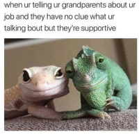 Dank Memes, Job, and Clue: when ur telling ur grandparents about ur  job and they have no clue what ur  talking bout but they're supportive Its hard to explain what it is @the_meredith and i do but we surely get it done 🔥