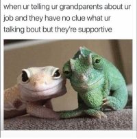 Funny, Lol, and Job: when ur telling ur grandparents about ur  job and they have no clue what ur  talking bout but they're supportive Lol 💕💕