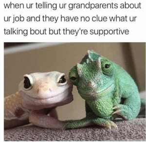 Meirl: when ur telling ur grandparents about  ur job and they have no clue what ur  talking bout but they're supportive Meirl