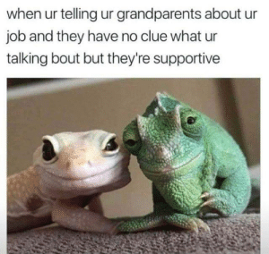 Dank, Love, and Memes: when ur telling ur grandparents about ur  job and they have no clue what ur  talking bout but they're supportive Nothing but love by Whitlow14 MORE MEMES