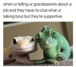 omg-humor:They couldn't look more on point: when ur telling ur grandparents about ur  job and they have no clue what ur  talking bout but they're supportive omg-humor:They couldn't look more on point