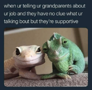 Love my grandparents❤ via /r/wholesomememes http://bit.ly/2wH2KJl: when ur telling ur grandparents about  ur job and they have no clue what ur  talking bout but they're supportive Love my grandparents❤ via /r/wholesomememes http://bit.ly/2wH2KJl