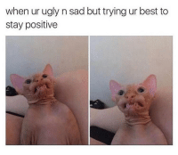 Dank, Ugly, and Best: when ur ugly n sad but trying ur best to  stay positive Me 24-7