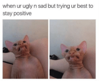 Ugly, Best, and Sad: when ur ugly n sad but trying ur best to  stay positive meirl