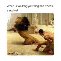 Good, Squirrel, and Classical Art: When ur walking your dog and it sees  a squirrel Who's a good boy Larry?