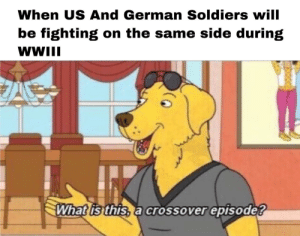 A surprise to be sure, but a welcome one.: When US And German Soldiers will  be fighting on the same side during  WWII  What is this, a crossover episode? A surprise to be sure, but a welcome one.