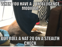 Definitely, Meme, and Good: WHEN VOU HAVE A 1INTELLIGENCE  MODIFIER  BUT ROLL A NAT 20 ON A STEALTH  CHECI  DOWNLOAD MEME GENERATOR FROM HTPowMEMECRUNCH.COM