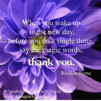 <3 Intuitive Guidance with Tracey Smith: When vou wake  up  to the new day,  efore you do a single thing,  say the magic words,  OLL  Rhonda Byrne  Intuitive Suidance  www.MessagesOfti  with Tracey  ight ca <3 Intuitive Guidance with Tracey Smith