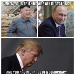 Dictators: WHEN VOUR FRIENDSARE ALL DICTATORS  AND VOU ARE IN CHARGE OF A DEMOCRACY