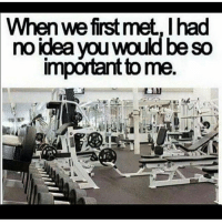 Funny, Love, and Memes: When we first met, I had  no idea you would be so  impórtant to me. .. 💥💥💥💥💥💥💥 . .. thank you for always being there for me 😍.. 💥💥💥💥💥💥💥 FOLLOW US . ⬇️⬇️⬇️⬇️⬇️⬇️⬇️⬇️⬇️⬇️⬇️⬇️ 🔥🔥@bodybuilding_humour 🔥🔥 ⬆️⬆️⬆️⬆️⬆️⬆️⬆️⬆️⬆️⬆️⬆️⬆️ ... workout bodybuilding gymmemes crossfit strong motivation instalike powerlifting Quote quotes gymhumour deadlift squat bench love gymhumour funny joke legday instagood fitspo motivation girlswholift fitchick mma connermcgregor