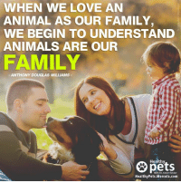 Because these animals are our family!: WHEN WE LOVE AN  ANIMAL AS OUR FAMILY  WE BEGIN TO UNDERSTAND  ANIMALS ARE OUR  FAMILY  ANTHONY DOUGLAS WILLIAMS  Healthy  With Dr. Karen Becker  Healthy Pets. Mercola.com Because these animals are our family!