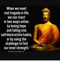 Memes, 🤖, and Mafia: When we meet  real tragedy in life,  We can react  in two ways-either  by losing hope  and falling into  self-destructive habits,  or by using the  challenge to find  our inner strength.  MOTIVATION MAFIA You're stronger than you think 💡