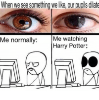 Harry Potter, Potter, and Harry: When we see something we ike, our pupils dilate  Me watching  Harry Potter:  Me normally:  고  Sal 고 Describes me.