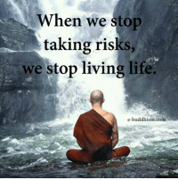 Buddhism: When we stop  taking risks,  we stop living life.  e-buddhism co