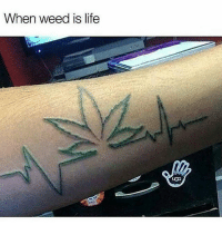 Life, Memes, and Weed: When weed is life