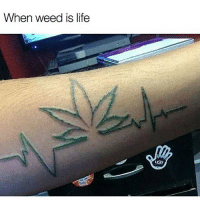 Memes, Ugg, and Uggs: When weed is life  UGG