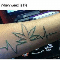 Life, Memes, and Weed: When weed is life  UGG