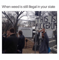 Rep your state in the comments! @thehighsociety: When weed is still illegal in your state  THIS  FUCKEDUP  TheHighSociety Rep your state in the comments! @thehighsociety