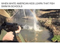 Memes, American, and Fish: WHEN WHITE AMERICAN KIDS LEARN THAT FISH  SWIM IN SCHOOLS Anyone else agree ? via /r/memes https://ift.tt/2wX3VnK