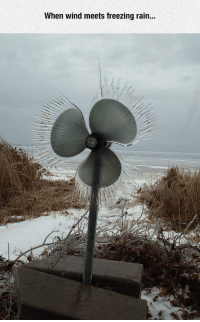 "<p>Wind Vs. Freezing Rain.<br/><a href=""http://daily-meme.tumblr.com""><span style=""color: #0000cd;""><a href=""http://daily-meme.tumblr.com/"">http://daily-meme.tumblr.com/</a></span></a></p>: When wind meets freezing rain.. <p>Wind Vs. Freezing Rain.<br/><a href=""http://daily-meme.tumblr.com""><span style=""color: #0000cd;""><a href=""http://daily-meme.tumblr.com/"">http://daily-meme.tumblr.com/</a></span></a></p>"